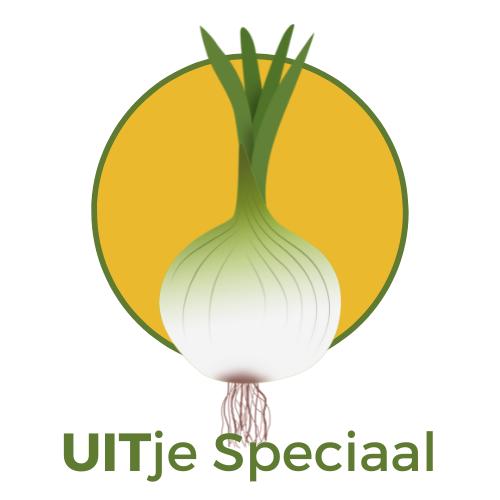 UITje Speciaal! Duurzame zakelijke uitjes met een positieve impact op team en milieu
